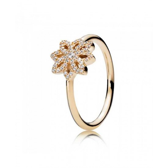 Pandora Ring-14ct Gold Cubic Zirconia Lace Botanique Jewelry