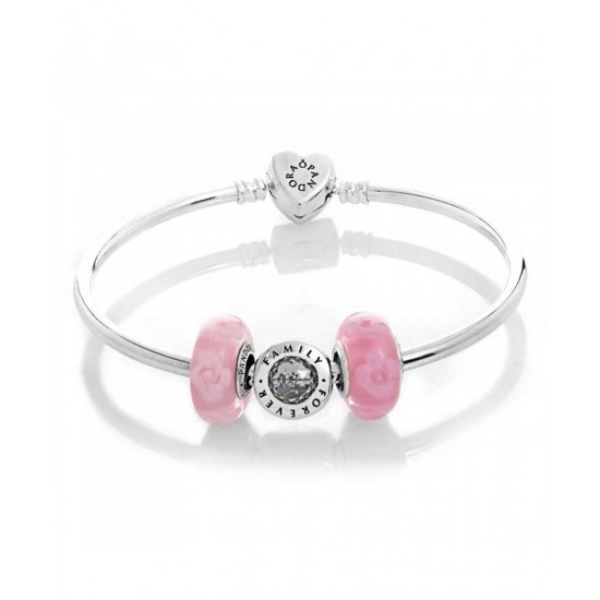 Pandora Bracelet-Silver Family Rose Complete Bangle Jewelry