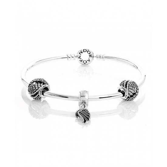 Pandora Bangle-Majestic Feathers Complete Jewelry