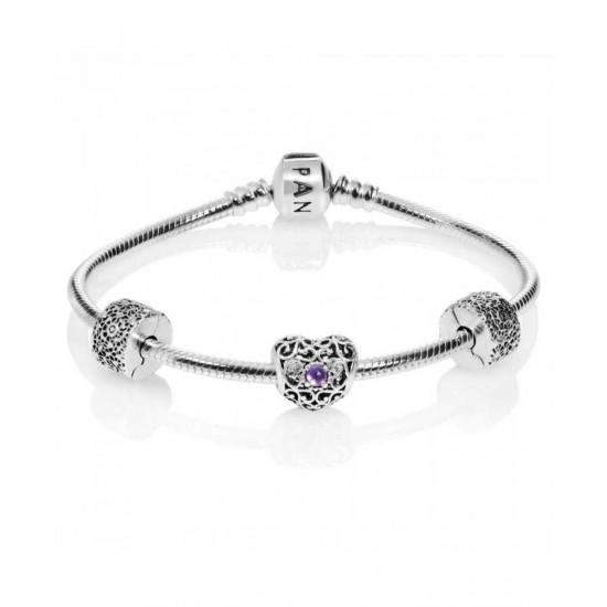 Pandora Bracelet-February Birthstone Complete Jewelry