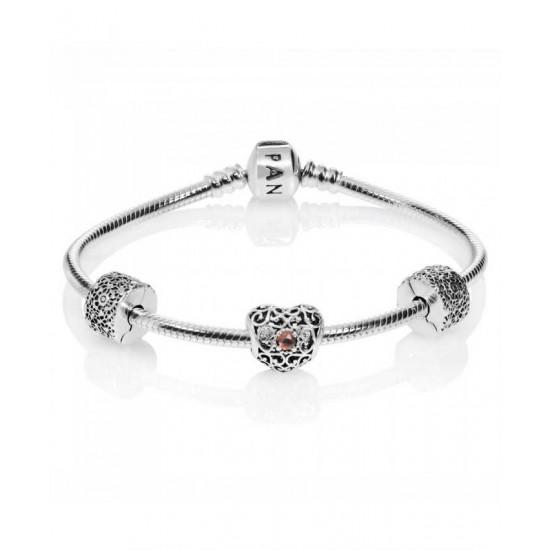 Pandora Bracelet-January Birthstone Complete Jewelry